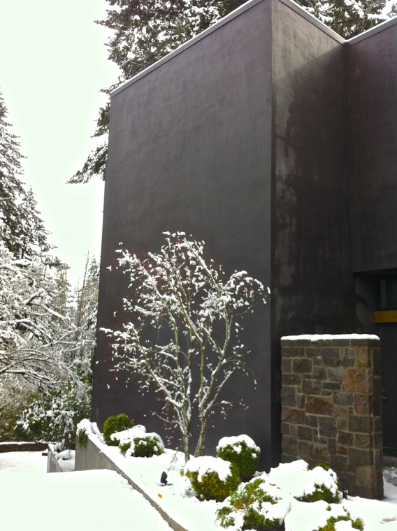 casa nera snowfall